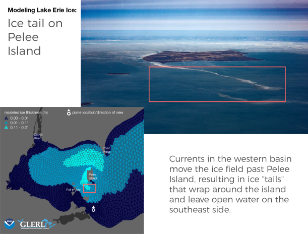 "Ice tail on Pelee Island: Currents in the western basin move the ice field past Pelee Island, resulting in ice ""tails"" that wrap around the island and leave open water on the southeast side."